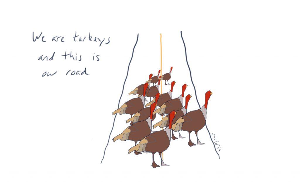 We are turkeys