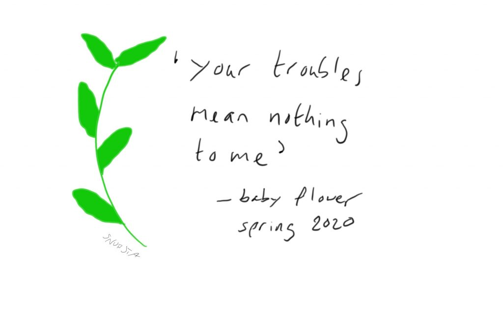 Spring insists